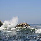 Shell Beach Ca. by Inga McCullough