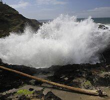 Cape Perpetua, Oregon by amyhoover