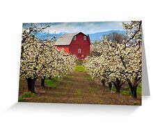 Red Barn Spring Greeting Card