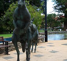 """""""Taking the Family Home - Perth West Australia"""" by Justine Walke"""