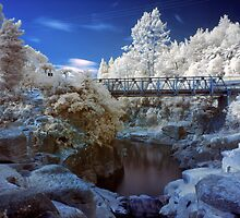 Wairoa River infrared 2 by Paul Mercer