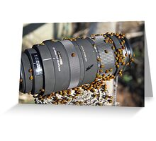 They love a Sigma lens...... Greeting Card