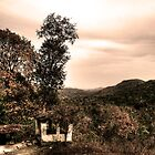 Two trees and a hut by rickvohra