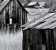 Abandoned Cabins by Mick Burkey