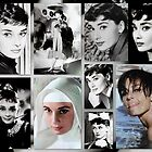 Tribute to Audrey  by The Creative Minds
