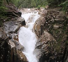 Finch Hatton Gorge Waterfall by StaceyH