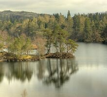 Tarn Hows by Jamie  Green
