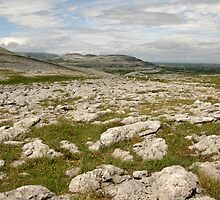 The Burren by John Quinn