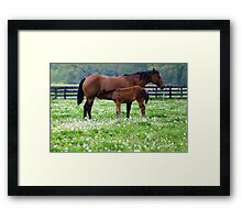 Naps over......Lunch time..... Framed Print
