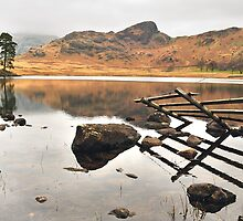 The Sleeping Giant - Golden Hour at Blea Tarn by Blagnys