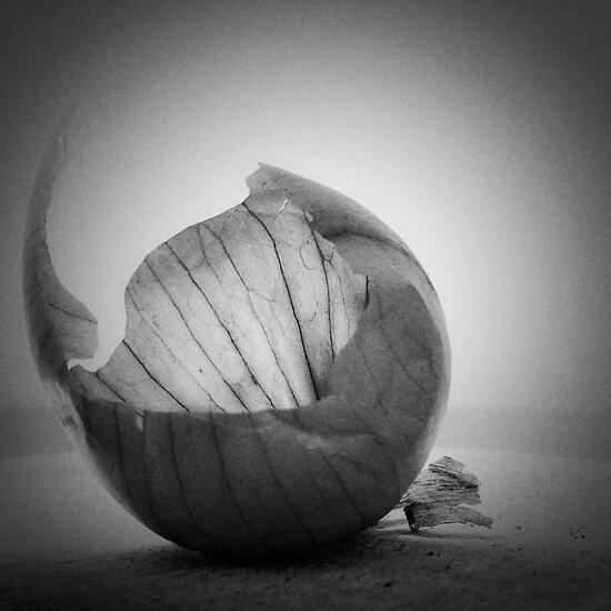 Onion skin by Igor Philipenko