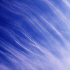 Nature's blue by Anne Staub