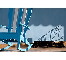 Sleeping dog & rocking chair, Cuba Photographic Print