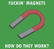 Fucking Magnets by flashman