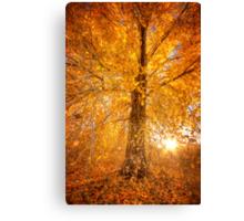 Exteme Fall Canvas Print