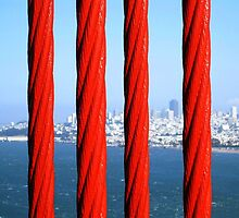 San Francisco from the Golden Gate Bridge, through the Steel Ropes. California 2009 by Igor Pozdnyakov