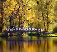 Golden Light - Daylesford by Hans Kawitzki