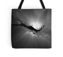 Seadragon & Sunlight Tote Bag