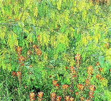 Mesquite And Paintbrushes by catherinemhowl