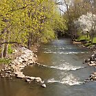 Mill Cteek in Spring - Dexter, Michigan by Robert Kelch, M.D.