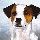 Jack Russell by Jan Szymczuk