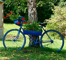 The Blue Bicycle - French canals by JenStone