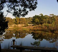 pond at sages cottage baxter by jennifer peters
