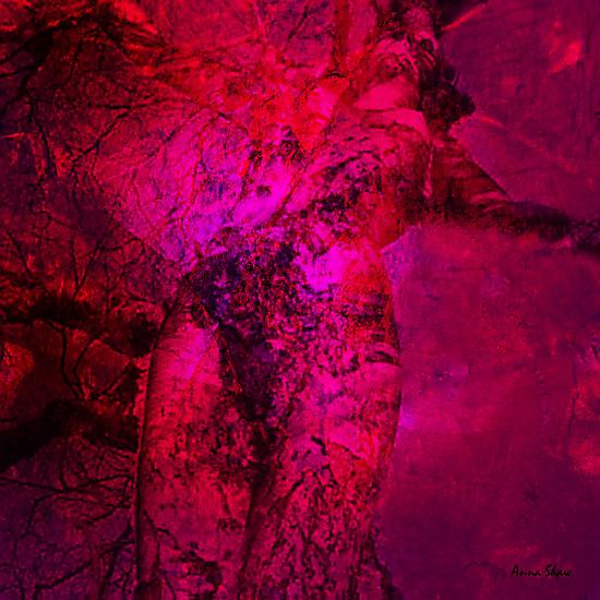 Free Spirit by Anna Shaw