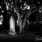 Light After Dark by anatunkia
