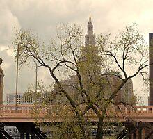 Cleveland CityScape 2010-01 by Bob  Perkoski