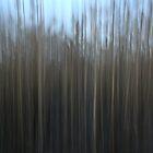 Reed curtain by tanmari