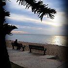 Sunrise Seat - Redcliffe by anatunkia