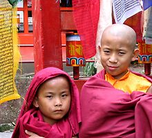 twofold. buddhist monks, sikkim, india by tim buckley | bodhiimages