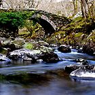 Rustic bridge, Cwm Bychan by John Williams