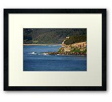Leggy Point Framed Print