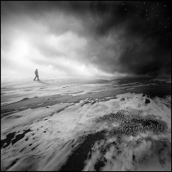 Stars by Michal Giedrojc