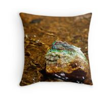 Treasue at the Waters Edge Throw Pillow