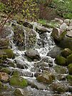 Relaxing Brook by Barberelli