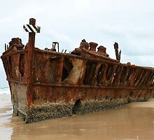 Fraser Island No. 5 by DanikaL