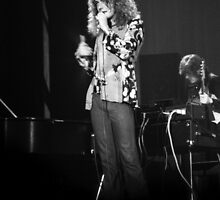 Robert Plant #2 by Mike Norton