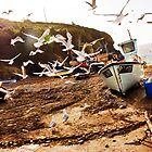 Cornish harbour, gulls looking for food... by Hugster62