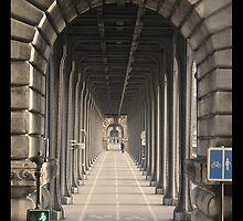 Pont Bir-Hakeim - Paris, France by Geert Biermans