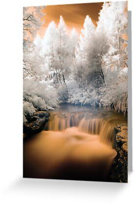 Kero Creek IR 2 unaltered by Paul Mercer