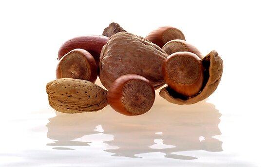 White Water Nuts by RandiScott