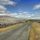 The Burren Road by John Quinn