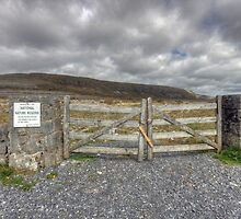 Burren National Park by John Quinn
