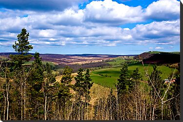 View of Pockley Moor. by Trevor Kersley