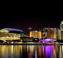 Esplanade Theatre Night Reflection, Singapore by William Yee Khai Teo