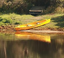 Reflection, Blackwood River, Bridgetown, Western Australia by Elaine Teague