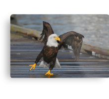 Put Your Right Foot In........ Metal Print